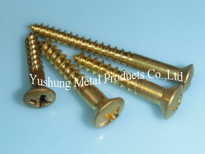 Brass phillips oval head wood screw